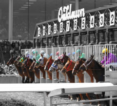 Ricky's Rockets ?: Oaklawn Park Picks for May 1, 2020