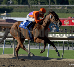 """Belmont Day Preview: The """"Dream Card"""""""