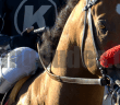 goldencents-1078x516