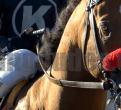 TVG Pacific Classic and Pat O'Brien Stakes Race Replays