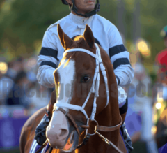 Oaklawn Preview Part 1 of 6: The Jockeys
