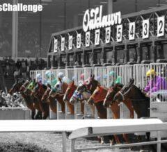 Racing Dudes Handicapping Challenge: Halterman vs. Black vs. Rapko