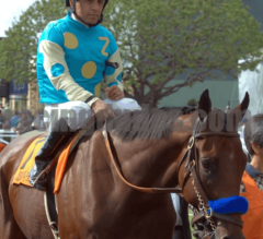 Top 5 Two Year Old Performances Heading into the Breeders' Cup