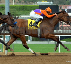 Cali Swag: Super Saturday at Santa Anita
