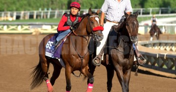 Goldencents_BCWork2014(2)