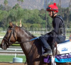 Free Wednesday Late Pick 4 Tickets 11/26/14