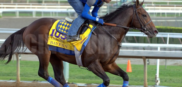 The Top Ten Story Lines of the 2014 Breeders' Cup