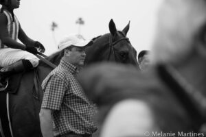 Dortmund After Winning Robert B. Lewis Stakes at Santa Anita.