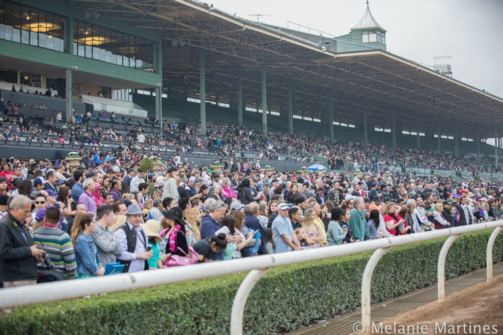 Huge Crowd at Santa Anita Park