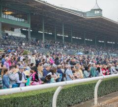FREE Friday Quarter Horse Picks 3/11/16