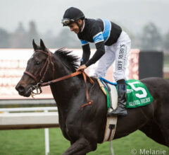 Shared Belief Returns to Track in Charles Town Classic