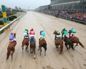 American Pharoah - The Rebel - GII - The 55th Running - 03-14-15 - R10 - OP - Start - Photo credit: Oaklawn/Coady Photography