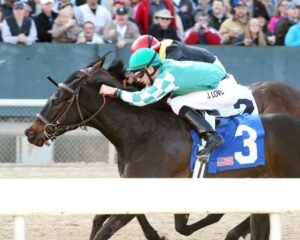 Be My Caroline - The Rainbow Miss - The 37th Running - 03-28-15 - R09 - OP - Inside - Photo credit: Oaklawn/Coady Photography