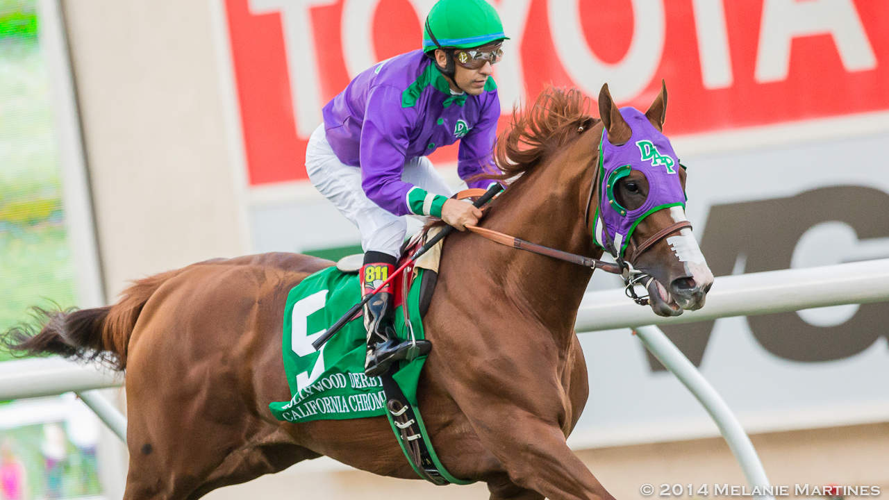 California Chrome_GoldCup-2014-2