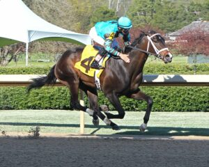 Weast Hill - The Rainbow - The 42nd Running - 03-29-15 - R08 - OP - Finish - Photo credit: Oaklawn/Coady Photography