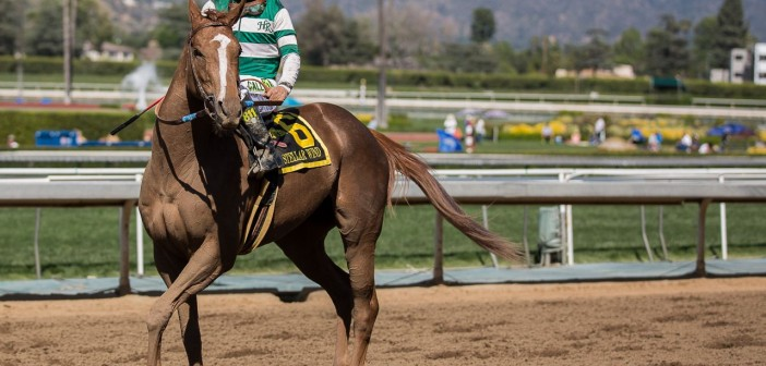Free Tuesday Late Pick 4 Tickets 5/19/15
