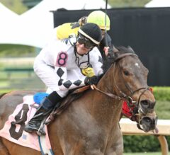 Oaklawn Preview Part 2 of 6: Ten Jockey's to Watch for in 2016