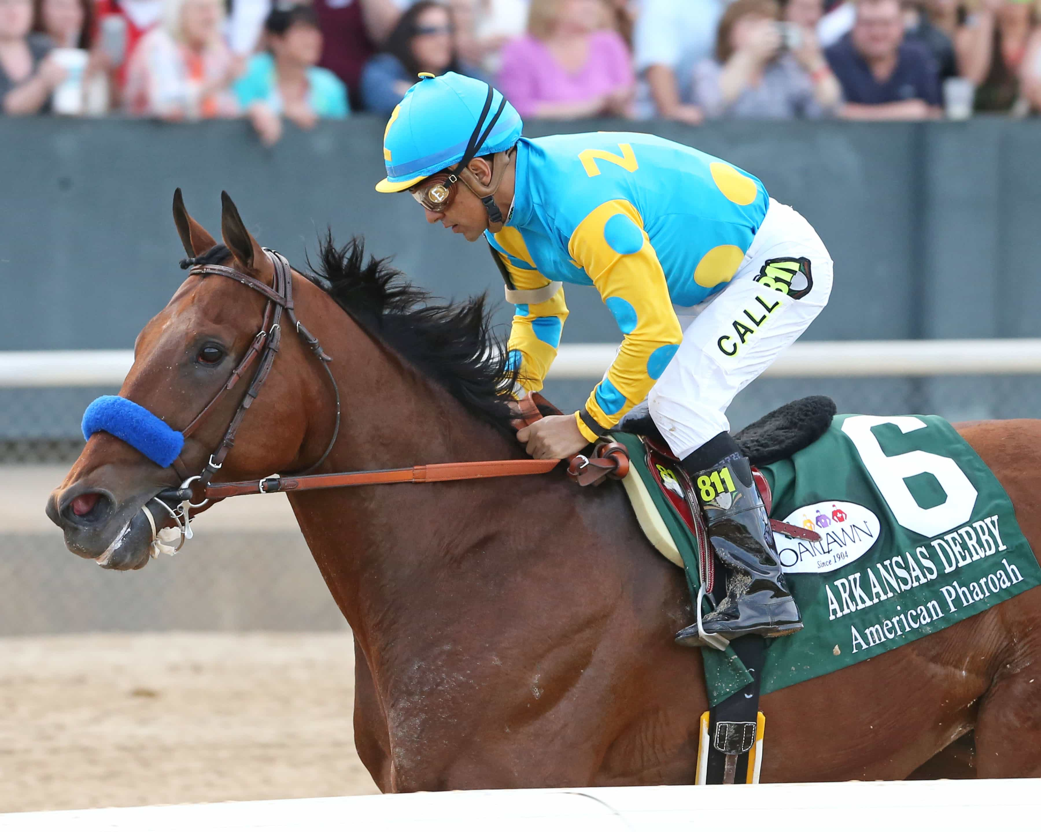 American Pharoah - THE ARKANSAS DERBY 79th Running (Grade I) - 04-11-15 - R11 - OP - 002 - Photo credit: Oaklawn/Coady Photography
