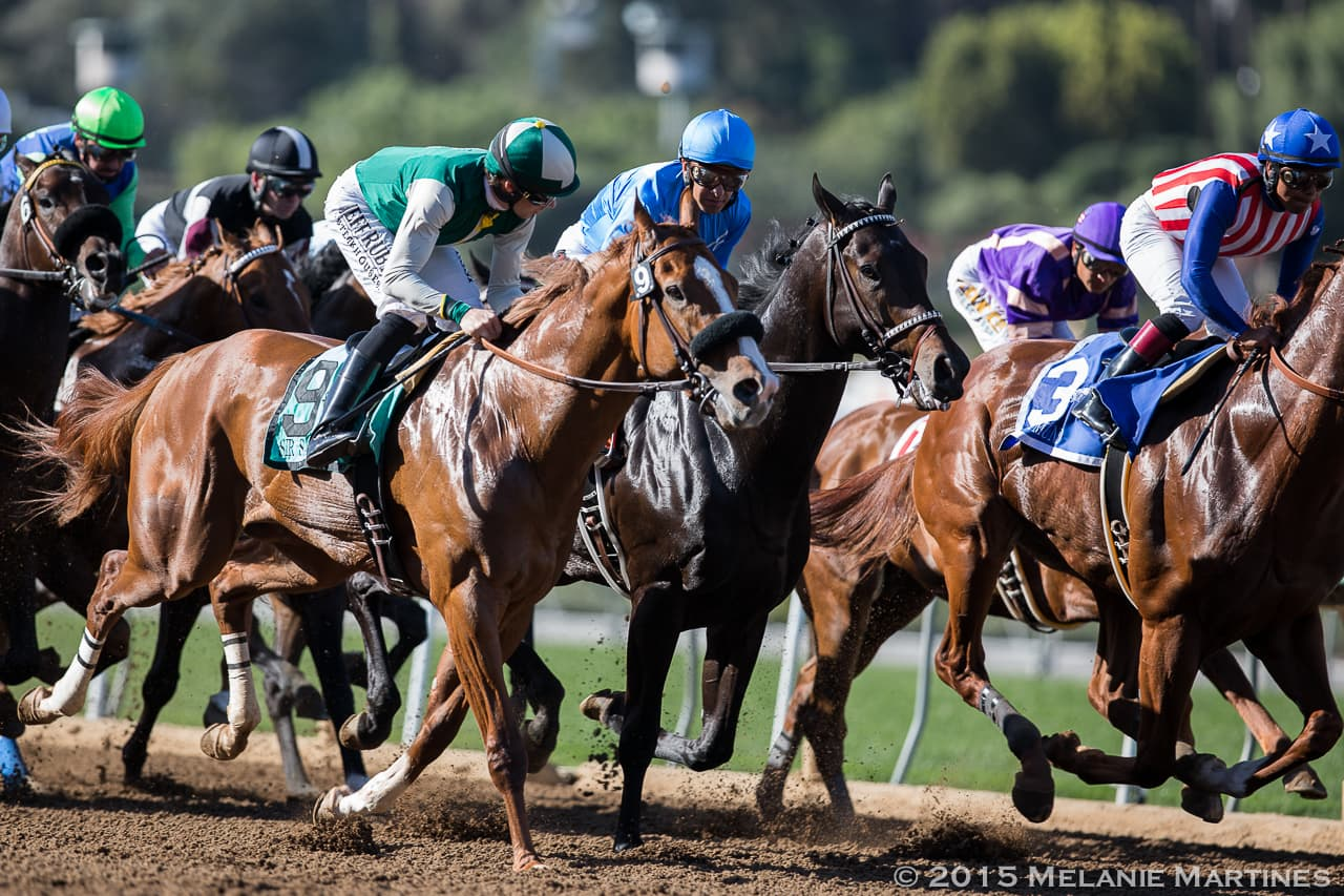 Sir Samson and Dortmund going into first turn in G2 San Felipe S.