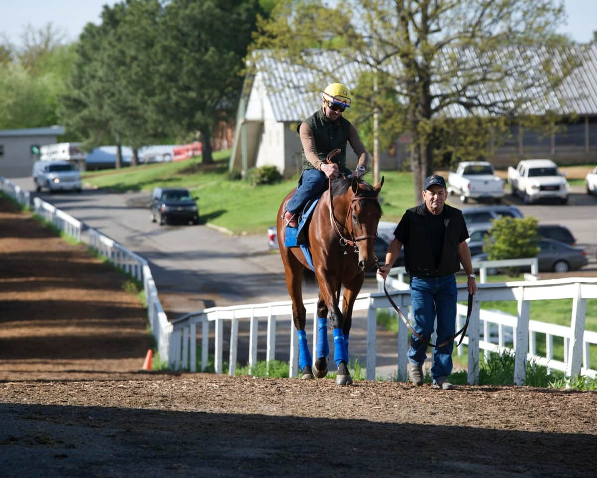 American Pharoah - OAKLAWN PARK - 04-11-15 - R11 - OP - Photo credit: Christine Aplin