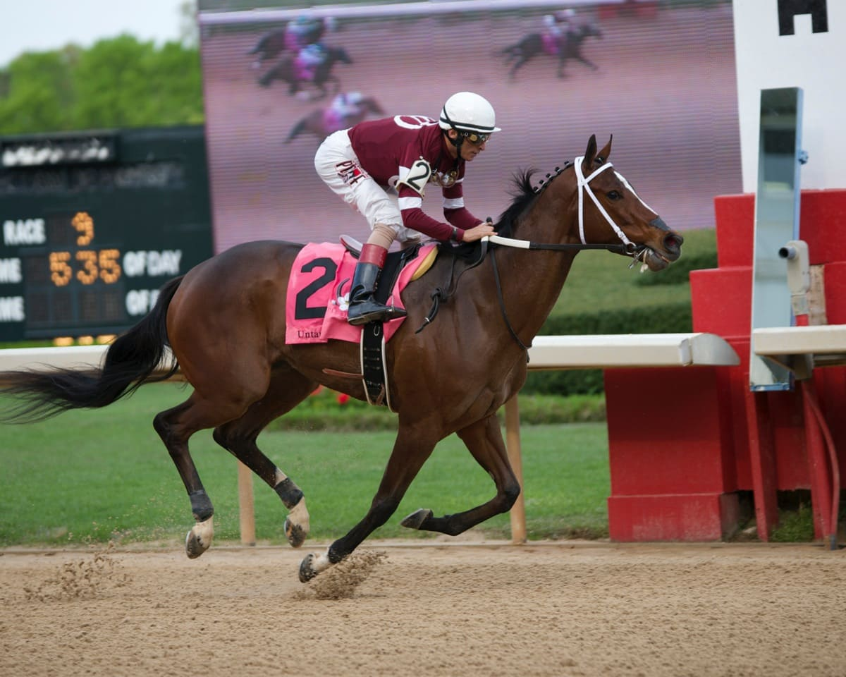 Untapable - THE APPLE BLOSSOM 51st Running (Grade I) - 04-10-15 - R09 - OP - 008 - Photo credit: Christine Aplin