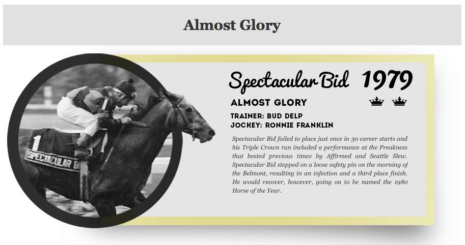 Spectacular Bid Triple Crown Infographic