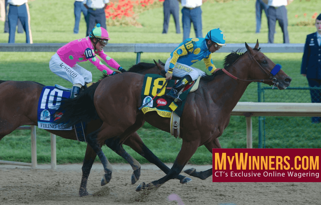 American Pharoah - MyWinners.com - CT's Exclusive Online Wagering - Photo credit: Christine Aplin