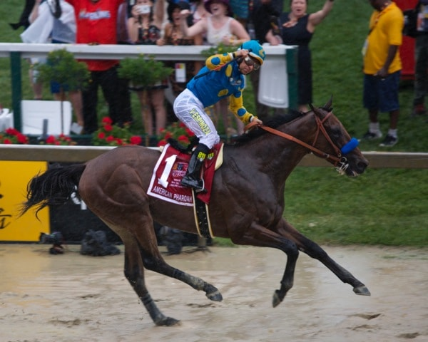 Preakness: Can't Justify betting against Derby victor