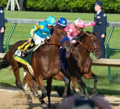 2015 Saratoga Selected Yearling Sale Results