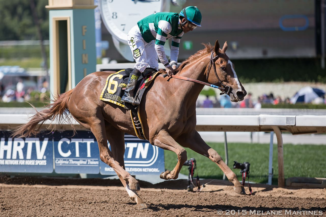 Stellar Wind - SANTA ANITA OAKS (Grade I) - 04-4-15 - SA - Photo credit: Melanie Martines