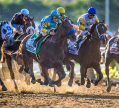 American Pharoah Aims at Breeders' Cup Classic