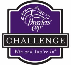 Win and You're In: Breeders' Cup Challenge Race Replays