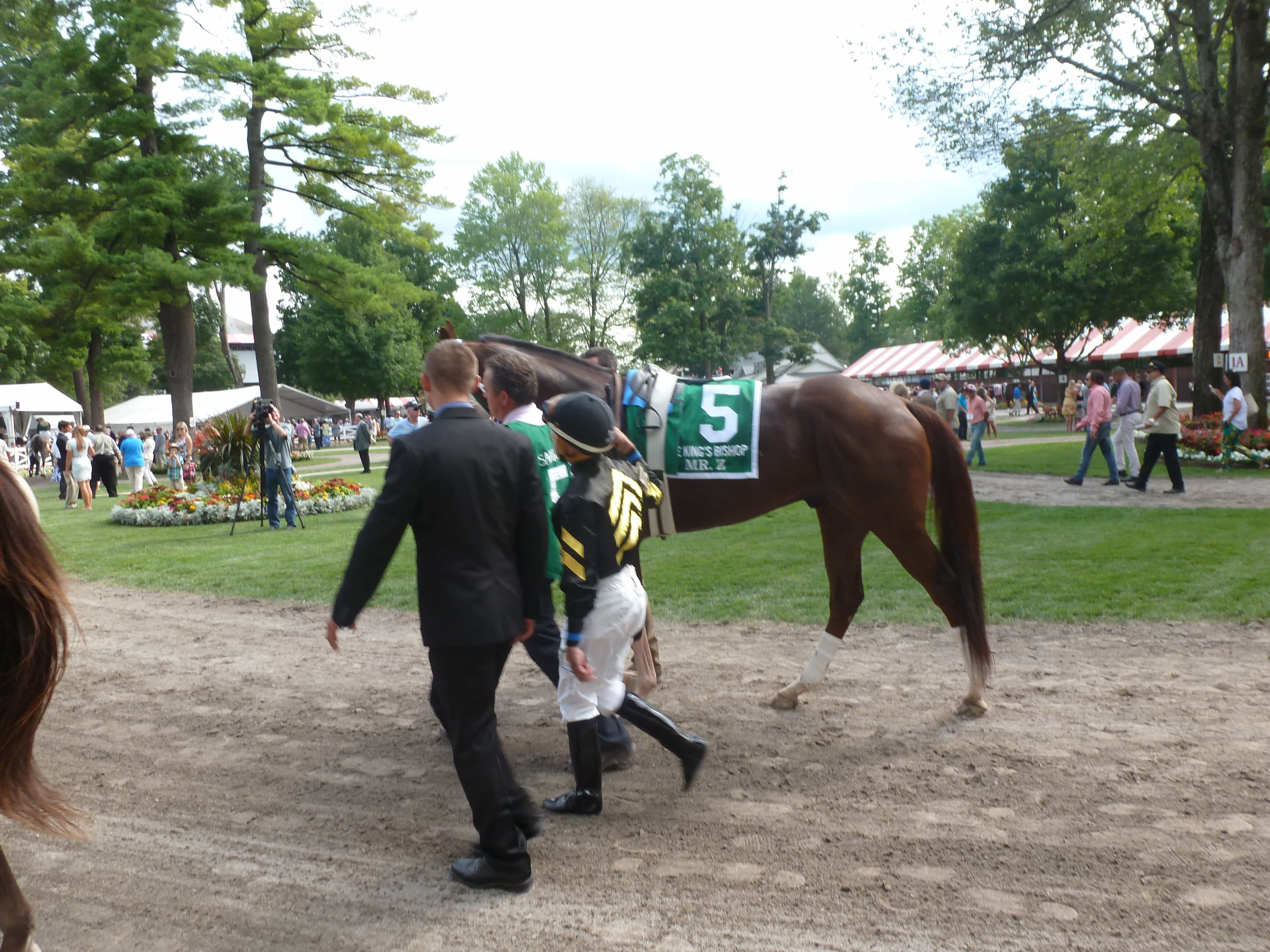 Mr. Z - KING'S BISHOP STAKES (Grade I) - 08-29-15 - R8 - SAR - Photo credit: Mike Spector (Follow him on Twitter @SaratogaSlim)