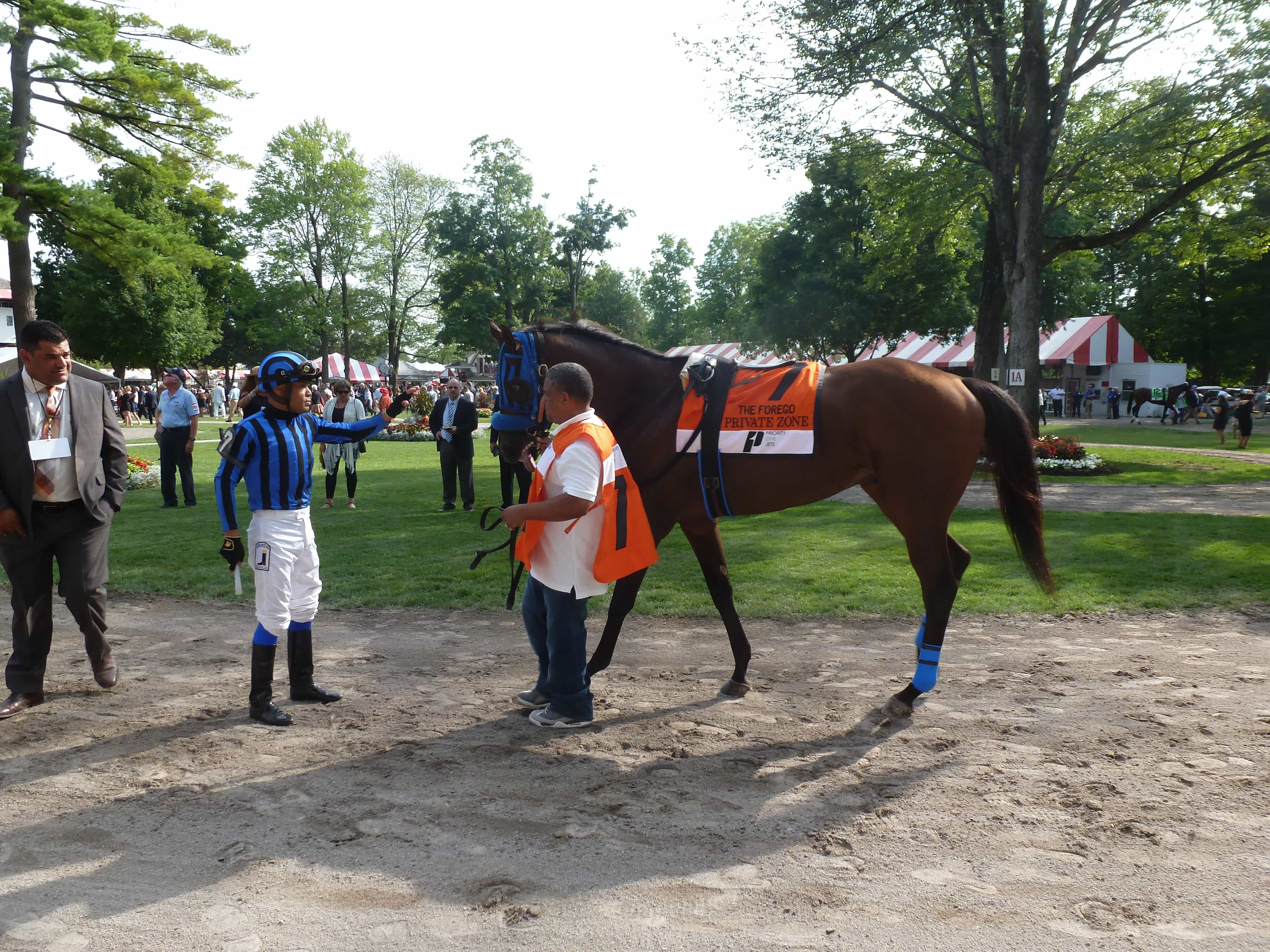 Private Zone - FOREGO STAKES (Grade I) - 08-29-15 - R9 - SAR - Photo credit: Mike Spector (Follow him on Twitter @SaratogaSlim)
