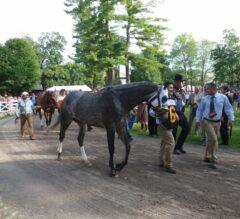 Pennsylvania Derby (Grade 2) Preview