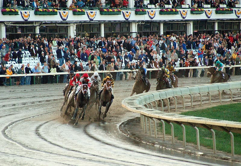 The first turn for the Oct. 27th, Breeder's Cup Classic at Monmouth Park, with Hard Spun (bay with diamond in front group), Street Sense (behind the front group, at the rail), Curlin (center, next to Street Sense), Tiago, Awesome Gem, George Washington, Diamond Stripes, and Any Given Saturday. (Photo Credit: TheBluZebra)