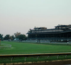 Honing in on the Breeders' Cup