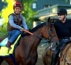 Breeders' Cup Classic Preview