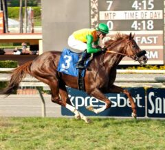 Twilight Derby Winner Om Heads Field of 12 in Santa Anita's Opening Day G2 Mathis Brothers Mile