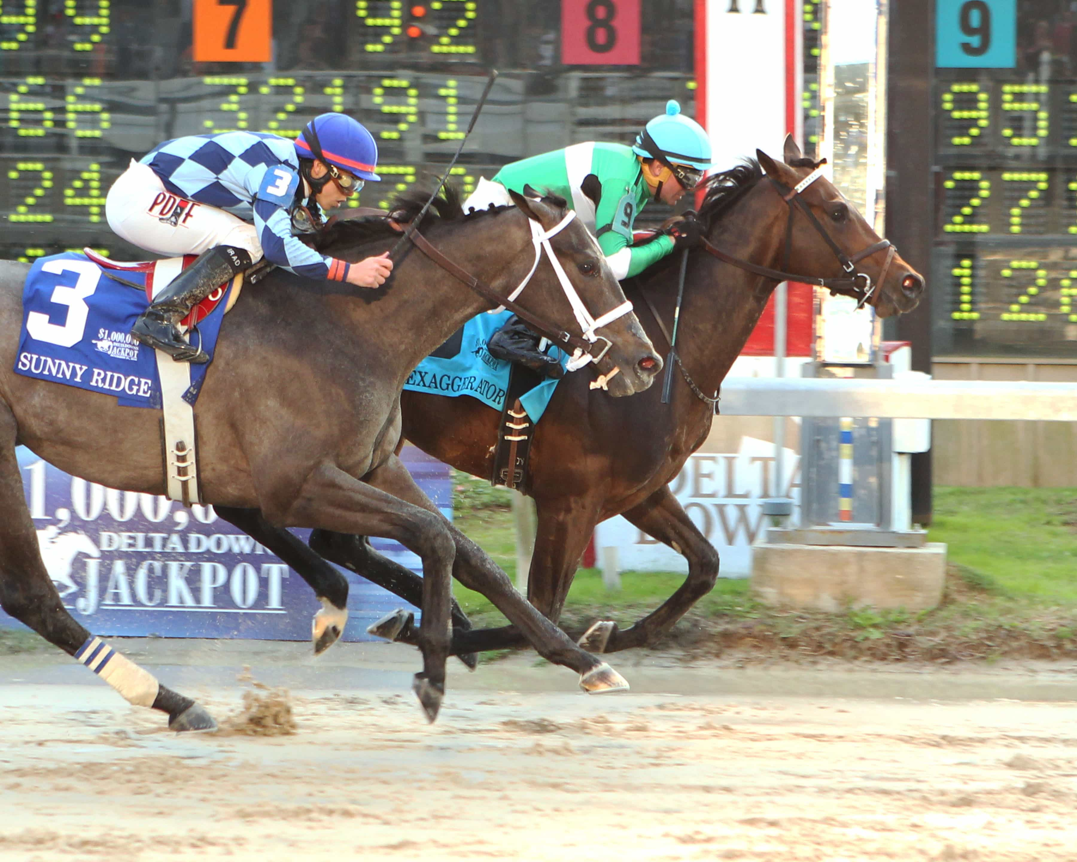 Exaggerator Holds On To Win $1,000,000 Delta Downs Jackpot - 11-21-15 - Photo Credit: Coady Photography