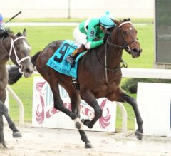 Exaggerator Holds On To Win $1,000,000 Delta Downs Jackpot