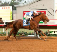 Lucky Folie Holds on in Desi Arnaz Stakes