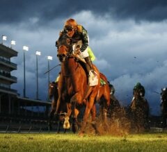Button Down Gets First Graded Stakes Win in $100,000 Cardinal Handicap