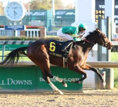 Ahh Chocolate Gets First Graded Stakes Win in Grade II Falls City 'Cap on Thanksgiving Day