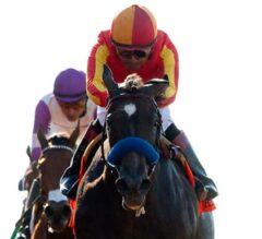 Baffert Trio Heads Field in G2, $200,000 Santa Ynez Stakes