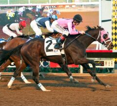 Solid Wager Upsets in Cary Grant Stakes