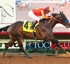 Toews On Ice Game in Bob Hope Stakes Triumph