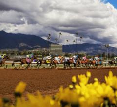 FREE Saturday Quarter Horse Picks 3/19/16