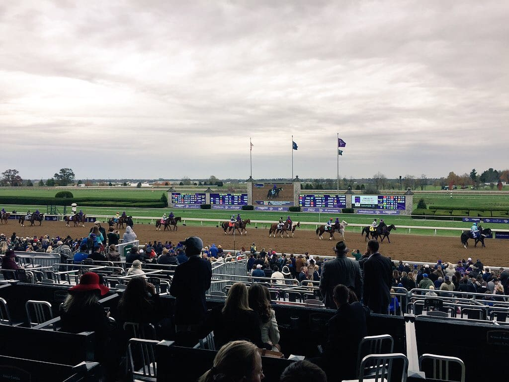 Runhappy in Breeders' Cup Sprint Post Parade at Keeneland