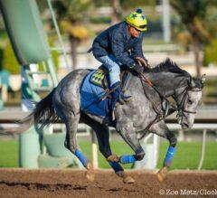 Santa Anita Stable Notes: El Kabeir 'Sitting on Big Race'